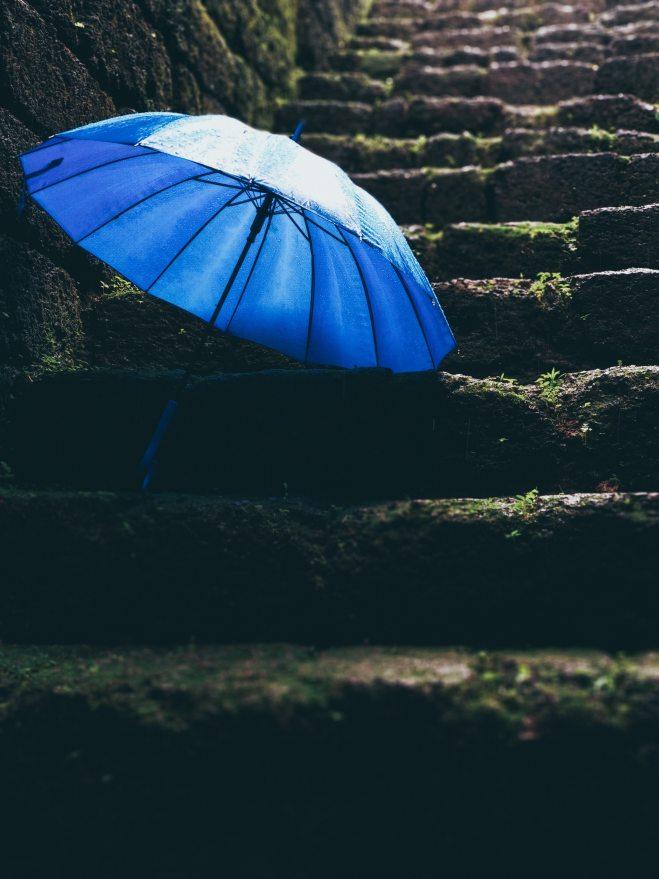 after-the-rain-blue-blur-1715161